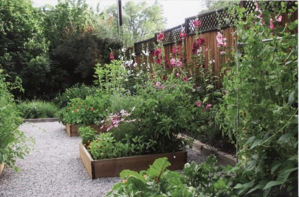 Betsy's garden
